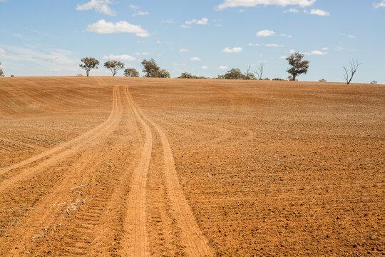 Wheel tracks across a ploughed paddock