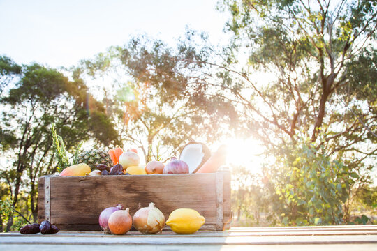 Healthy fresh food, fruit and veggies in wooden box on farm