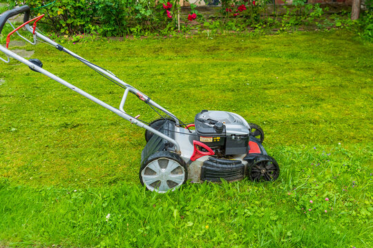An old gasoline lawn mower at work. A lawn before and after mowing