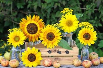 Sommerdekoration mit Sonnenblumen in Glasflaschen und Äpfeln