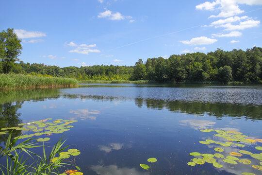 """View to the Papillen lake in """"Waldsieversdorf"""", Brandenburg switzerland, Germany"""