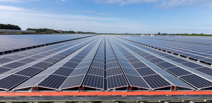 Solar photovoltaic modules installed in a power generation plant
