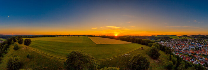 Sunset panorama of a wide farm land with cows in the foreground in a total view, beautiful landscape shot by a drone.