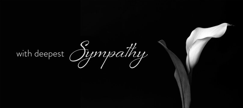 Sympathy card with calla flower isolated on black background
