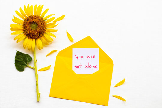 you are not alone message card handwriting in yellow envelope with yellow flower sunflower arrangement flat lay postcard style on background white