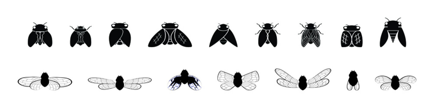 set of cicada silhouettes with various models. vector illustration