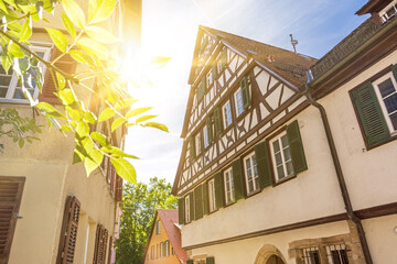 Sun shining through green leaves in front of historic buildings in the old town of Tübingen in Southern Germany