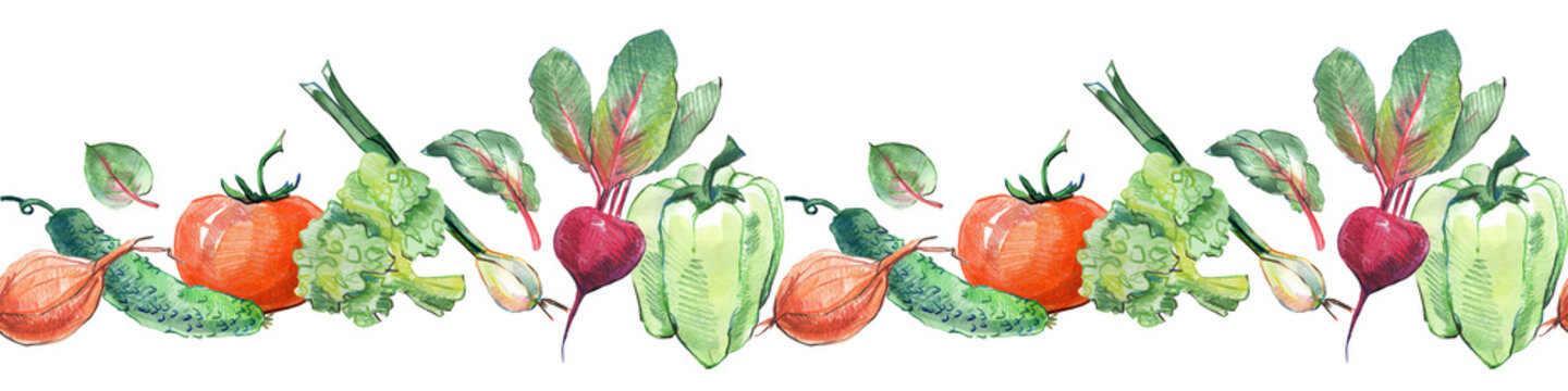 Seamless border pattern of watercolor vegetables and leaves for salad