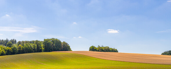 Tuscany like meadows in the Hunsrück near the Geierlay suspension bridge