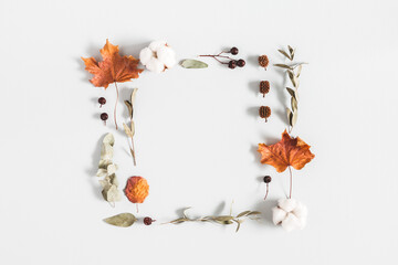 Autumn composition. Frame made of eucalyptus branches, cotton flowers, dried leaves on pastel gray...