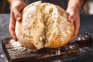 Male baker breaks freshly baked loaf of bread
