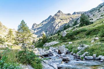 Poster de jardin Olive Paysage de montagne dans le Mercantour dans les Alpes Mountain landscape in Mercantour park in French Alps