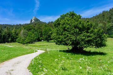 Urlaub in Bayern: Wanderung auf den Leonhardstein von Kreuth aus
