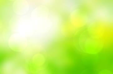 Wall Mural - Green bokeh background blur,holiday light wallpaper