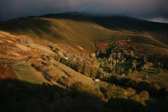 Pastoral scene in autumn
