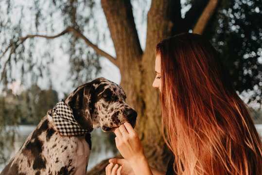 A woman in her twenties training and spending the day with her great dane puppy