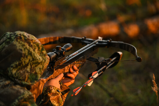 Adult man hunting with a recurved crossbow in the forest on an autumn day.
