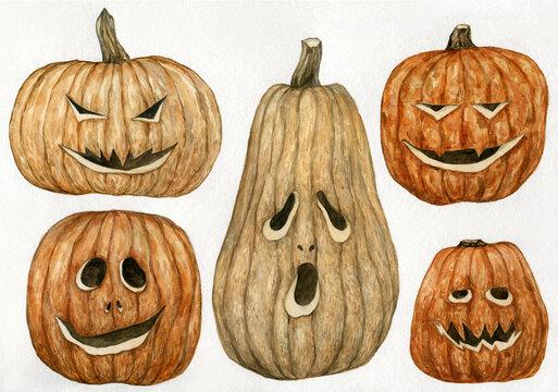 Watercolor pumpkin set