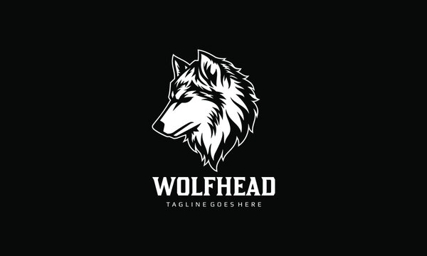 Wolf Head Vector Logo Template on black background