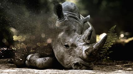 Foto op Canvas Neushoorn rhino fantasy art