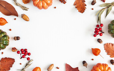 Autumn composition. Dried leaves, pumpkins, flowers, rowan berries on white background. Autumn,...