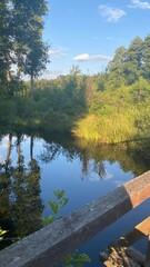 Fototapeta Błękitne niebo widok spokojnej  rzeki dużo roślinności obraz