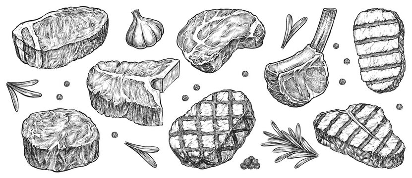 Steak sketch. Hand drawn beef, lamb and pork steak extra or medium rare with garlic, greenery and pepper spice vector collection. Butchery food meat product sketch engraved set isolated on white