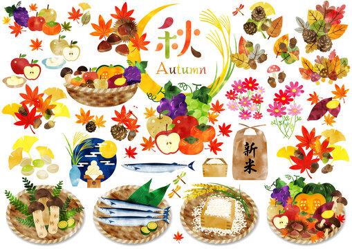 水彩画風 秋のかわいいイラスト1