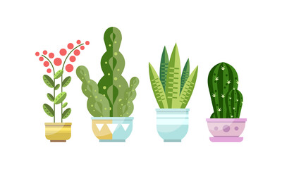 Green Growing Potted Houseplants Set, Home or Office Decorative Plants Flat Style Vector Illustration