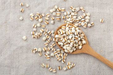 Pearl barley in wooden spoon on table