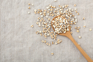 Pearl barley in wooden spoon on table background