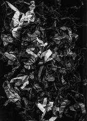 Rough abstract background. Crumpled texture. Black white shredded paper composition.