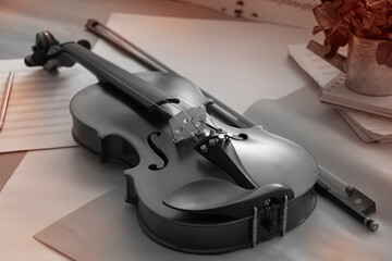 Violin and bow put beside blurred flower pot ,black and white tone,blurry light around