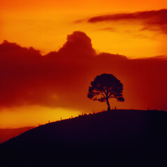 Foto op Canvas Rood paars sunset sky with tree