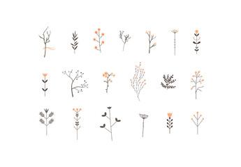 Tree Branches Art Kit