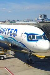 NEWARK, NJ -26 JUL 2020- View of a Boeing 757 airplane from United Airlines (UA) painted in a California theme livery at Newark Liberty International Airport (EWR) in New Jersey.