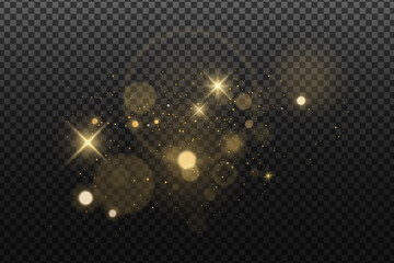Wall Mural - Abstract golden lights bokeh isolated on a dark transparent background. Shining stars and glare. Footage for your design. Realistic brilliant glitter. Vector illustration.