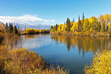 Bright autumn landscape with yellowed forest on the banks of the Irkut River on a sunny September day. Beautiful natural background. Siberia, Buryatia, Baikal region, Sayan mountains, Tunka Valley