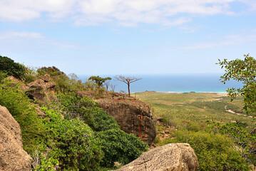 Socotra Island landscape, Yemen, Africa