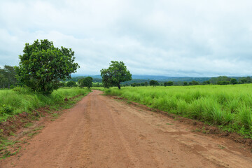 View of dirt road in countryside