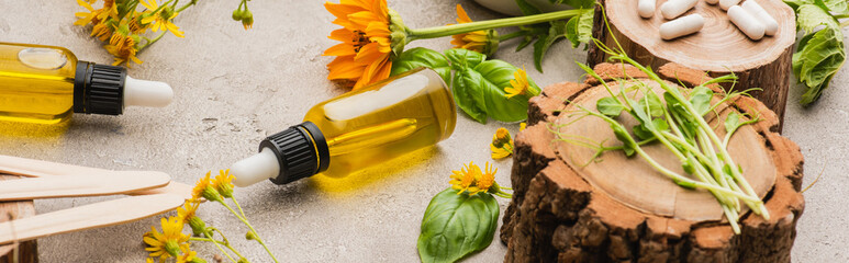 panoramic shot of wildflowers, herbs, bottles and pills on concrete background, naturopathy concept