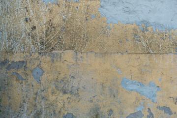 Fotobehang Oude vuile getextureerde muur Schäden an der Hauswand verursacht durch Efeu