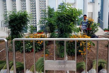 A worker plants in front of an office building of Chinese tech firm Tencent, owner of messaging app WeChat, in Beijing