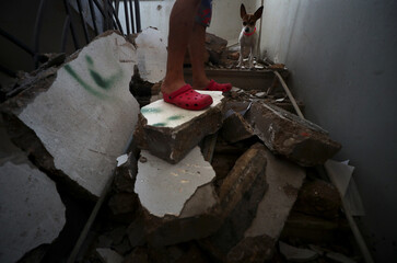 A dog called Pepsi stands amongst debris in a stairwell of a residential building that was damaged in Tuesday's blast in Beirut's port area