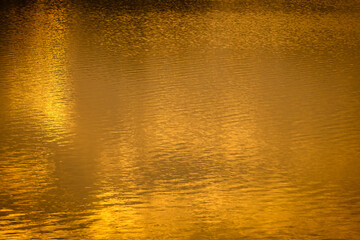 The golden light of the sun reflected on the water surface during in the sunset time.