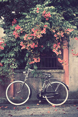 bicycle with flowers on background, a bike leans against the wall picture vintage effect