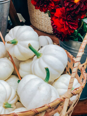 Decorative white pumpkins pile in basket on market