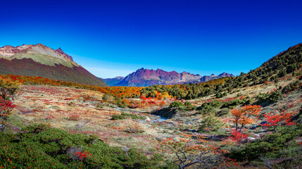 Panoramic view over magical colorful valley with austral forests, peatbogs, dead trees, glacial streams and high mountains in Tierra del Fuego National Park, Patagonia, Argentina