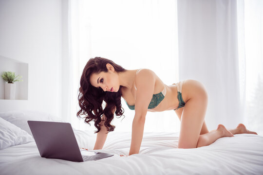 Profile photo of naughty lady home remote work online chat show body vip client ready take off bra for big money stand knees cat position wear lace bikini sheets bedroom indoors