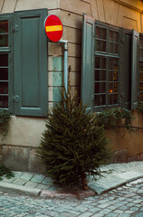 Christmas tree thrown away on the street after Christmas.